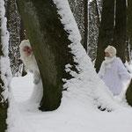 Fantasie & Wirklichkeit Fotografien und Gedichte Kathrin Steiger Winter Schnee Schneefee Schneeelfe Schnee-Elfe Elf Winterfee Winterelfe Fairy Snow Fairy Fairies