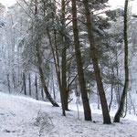 Fantasie & Wirklichkeit Fotografien und Gedichte Kathrin Steiger Winter
