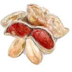 Arachide ピーナッツ