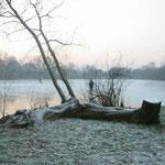 Zugefrorener Dorfsee