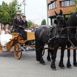 Hochzeitfotografie, Hochzeitspaar mit der Kutsche