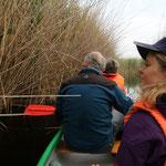 Ungarn - Naturtour - Auf Schilfexkursion im Fertö-Hansag Nationalpark