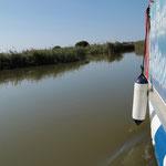 Erforschen das Delta dabei auch per Boot...