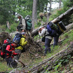 Austria - Experience Wilderness National Park Kalkalpen - Into the wild