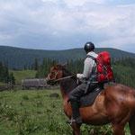 Schließlich der krönende Abschluß: Per Pferd durch die Ostkarpaten.