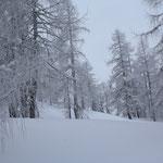 Schnee gibts hier genug