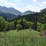 Slowakia - Naturtour - Mala Fatra NP