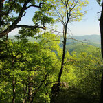 Ungarn - Naturtour - Blick über den Bükk Nationalpark