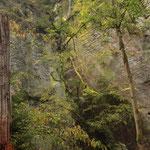 und eine einzigartige Naturlandschaft, das Elbsandsteingebirge.