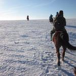 Schlußendlich reiten für  auf den Rücken von Pferden durch den Schnee.