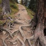 Auf dem wahrscheinlich schönsten Weg der südtiroler Dolomiten...