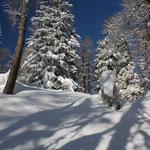 Traumhafte Schneelandschaften