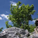 Slowakia - Naturtour - Male Karpaty Landschaftsschutzgebiet