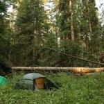 Inmitten der Wildnis das Camp aufschlagen