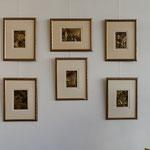 Bilder Franz Dengler...