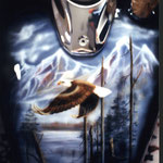 Weißkopfseeadler auf Motorradtank
