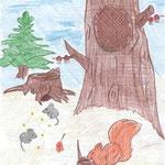 Анастасия К., 3а кл. Лесные происшествия