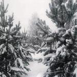 Анна К., 2в кл. Все в снегу