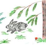 """Николай Рубцов. """"Про зайца"""". Рисовал Антон Ч., 4б класс"""