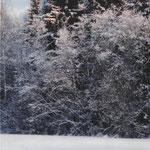 Дмитрий З., 2а кл. Всё в снегу