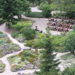 Rennsteiggarten - Bild 2