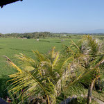 view accomodation bali bungalow
