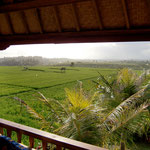 look out bali accommodation bungalow