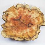 Hirnholzschale mit Naturrand aus Eibenholz