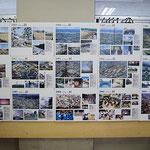 2008年9月20日 茶陵祭 歴史パネルの展示。