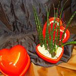 bepflanztes Keramikherzchen