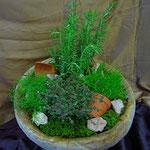 bepflanzte Holzschale mit Kräuter