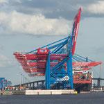 Die Containerterminals.