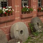 Blumen und Mühlsteine. - Bad Windsheim