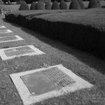 Friedhof Ohlsdorf.