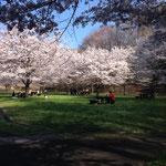 テーブルや椅子で休憩できる公園