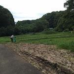 田んぼや畑のある公園