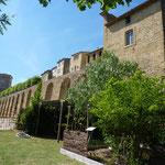 Le jardin conservatoire des plantes tinctoriales au Château de Lauris