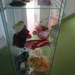 Exposition de produits et accessoires teints avec la cochenille locale