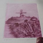 Gravure réalisée avec le carmin de cochenille produit à Lanzarote