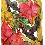 Metamorfosis Vegetal  /acuarela sobre papel 40,5x29,5