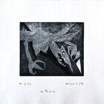 Titel: Bia; Serie: 1/25 (19 verbleibend); Technik: Radierung; Datum: November 1988 Format (HxB): 29 x 35 cm