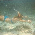 Playa del Carmen Snorkeling with Albertos Scuba