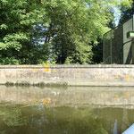 Portage à Ezy sur Eure, canoë nature Anet