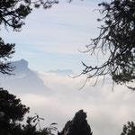 Immer über dem Nebelmeer