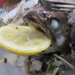 Forellen mit Butterreis,Gemüse und Tartarsauce...Alles weg!