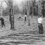 In 1938, members of the Caberfae Ski Club clear land for their future clubhouse. The Club and clubhouse still are active at the base of the Caberfae slopes.