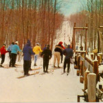 By far, the most popular lift in the 1950s was the rope tow between Number One and Number Four (Canyon).