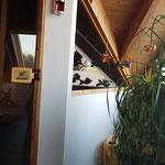 Sauna mit Gipskartonplatten verkleidet