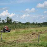 Pistenbully in der Landwirtschaft!