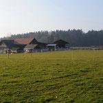 Stall Reitenbach